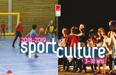 carte culture et carte sport mairie eysines carte réduction famille sports