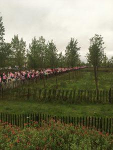 ruban rose marche contre le cancer du sein amicale Laïque Eysines randonnée Bordeaux