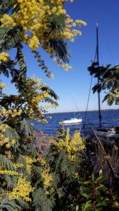 randonnée douce sport nature, loisirs, bien-être plage, bassin, printemps, Bordeaux Marie Eysines